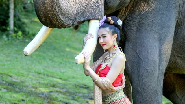 Asian woman with elephant  ,Chiang mai Thailand. video