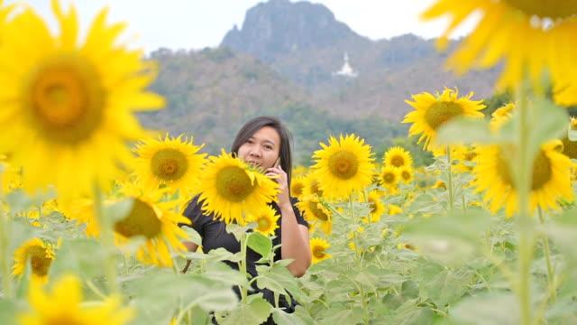 Asian women in the garden sunflowers. video