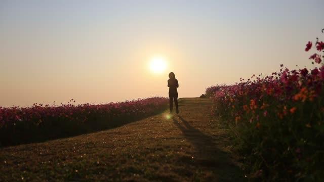 asian women jogging on morning at cosmos flower field - дикая растительность стоковые видео и кадры b-roll