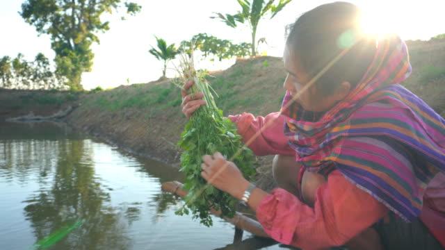 Asian Women working in vegetable garden