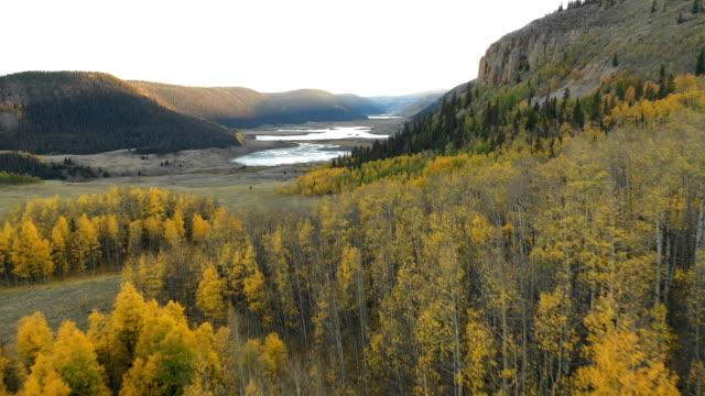 vídeos de stock, filmes e b-roll de aspens e lago escondido na região selvagem de colorado - condado de pitkin