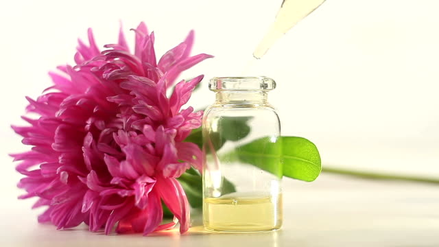 aster essential oil in  beautiful bottle on  White background