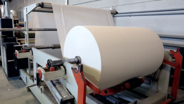 at paper manufacturing factory - rotolo video stock e b–roll
