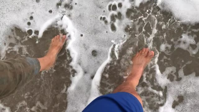 at the beach - gulf coast states stock videos & royalty-free footage
