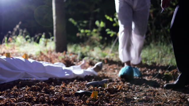At the crime scene 4K Two men, crime scene investigation, police and forensics doing their jobs, there is a dead body in the forest. 4K crime scene stock videos & royalty-free footage