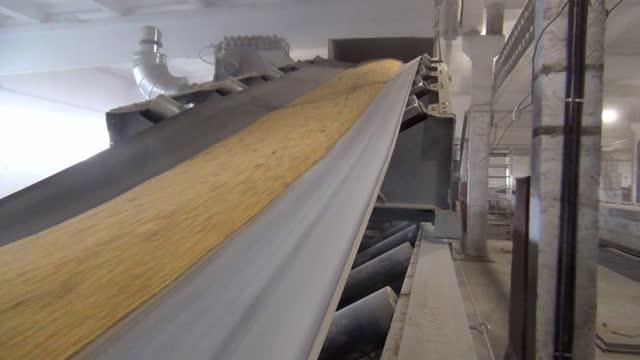 vidéos et rushes de à l'élévateur, le grain est transporté sur une bande transporteuse - seigle grain