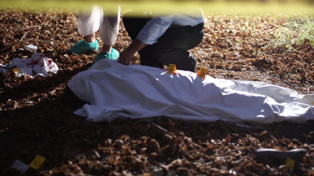 At the murder scene 4K Two men, crime scene investigation, police and forensics doing their jobs, there is a dead body in the forest. 4K crime scene stock videos & royalty-free footage