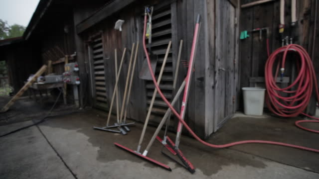 At The Vineyard - Squeegees at Fruit Intake Shed