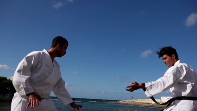 Athletes During Fight Simulation For Karate And Extreme Sports video