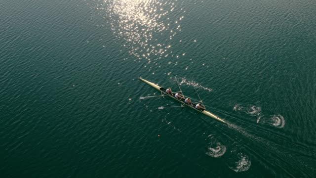 vídeos de stock, filmes e b-roll de aerial atletas de remo em um lago, um quatro sem masculino - remo esporte aquático