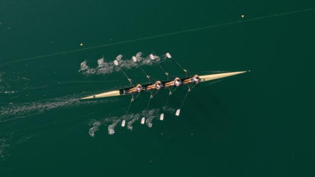 vídeos de stock, filmes e b-roll de aerial atletas de remo em um quádruplo scull um lago ensolarado - remo esporte aquático