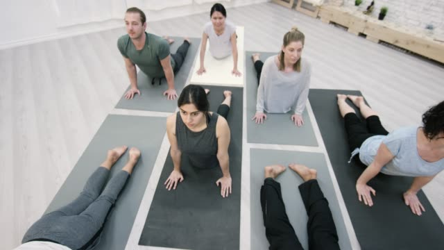 Athletic adults doing yoga together in a studio