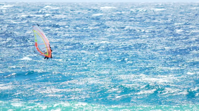 Athletic man enjoying extreme windsurfing during summer vacation, active life video