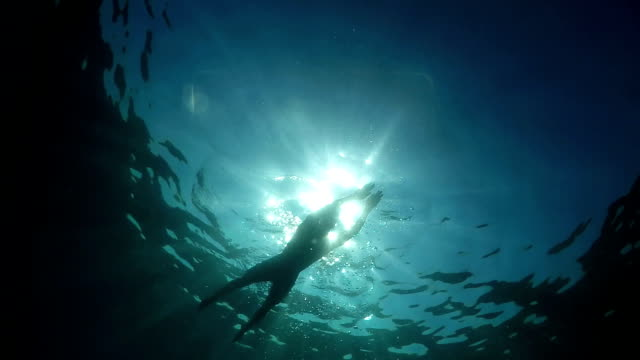 UNDERWATER LOW ANGLE: Athletic man swimming in deep blue ocean on sunny day video