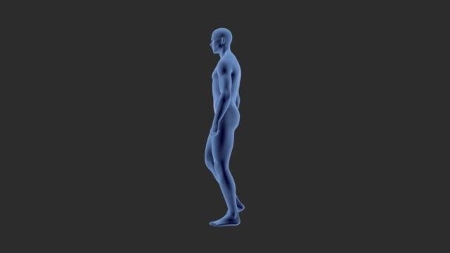 Athletic man walking, for medicinal animation.