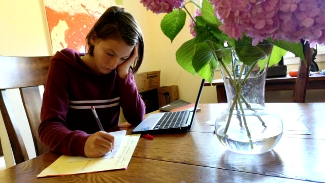 athletic preteen female doing homework in dining room with laptop and paper - ręczna kamera filmów i materiałów b-roll