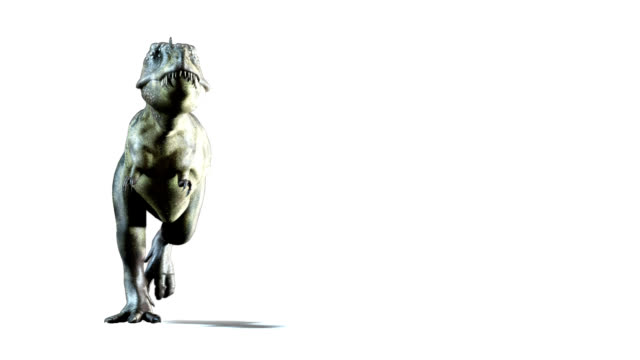 Tyrannosaure attaques - Vidéo