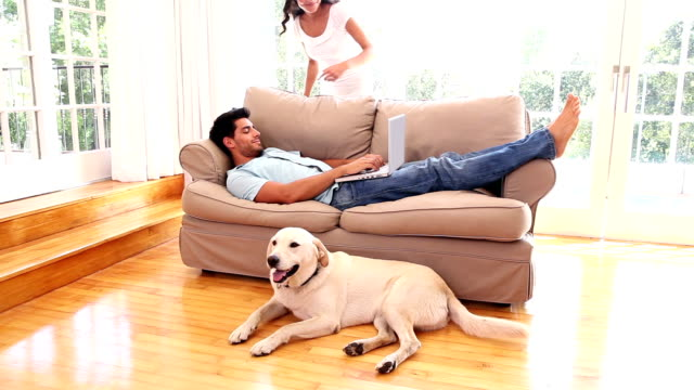 Attractive couple relaxing in sitting room with pet labrador video