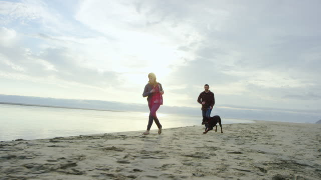 Attractive couple running on the beach in slow motion with their dog around sunset video
