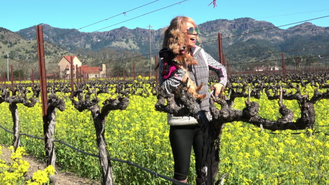 Attractive Fit Woman in the Vineyard in Napa Valley California video