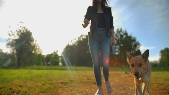 Attractive handsome woman in jeans leads her dog on a leash in the park