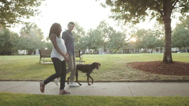 UHD 4K SLO MO: Attractive mixed race pregnant couple taking their dog for a walk