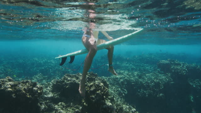 Video Attractive surfer sitting on her surfboard