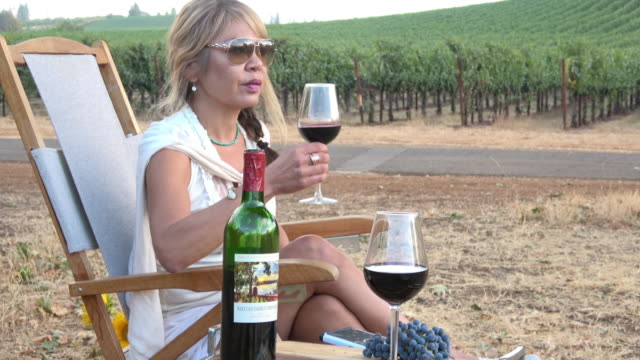 Attractive Woman Drinking a Glass of Wine in a Picnic Vineyard video