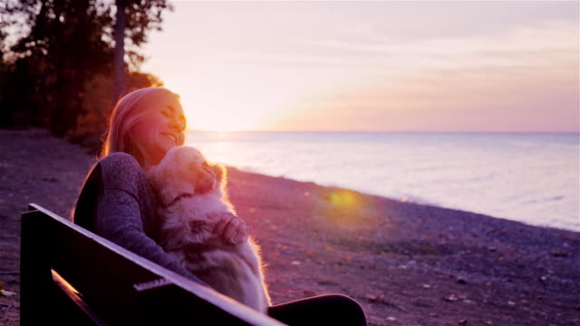 Attractive woman plays with her dog. Sitting on a bench in the park against the backdrop of a beautiful sunset over the sea - video