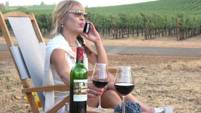 Attractive Woman Talking on Mobile Phone and Drinking Wine in a Picnic Vineyard video