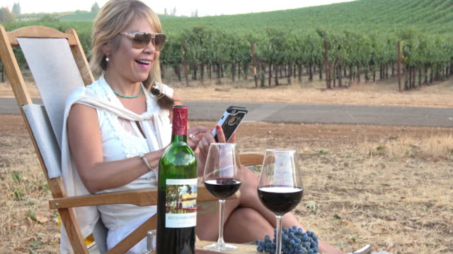 Attractive Woman Talking on Mobile Phone in a Picnic Vineyard video