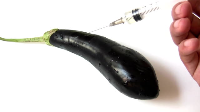 Aubergine Genetic Modification