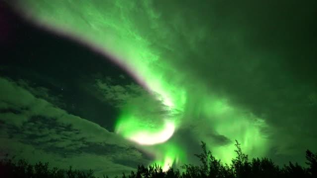 aurora borealis (norrsken) i whitehorse, kanada - realtid bildbanksvideor och videomaterial från bakom kulisserna