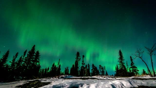 aurora boreale time lapse ontario canada - nord video stock e b–roll