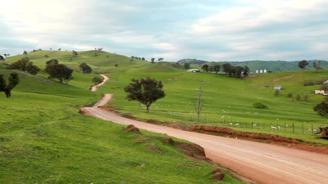 Aussie sheep farm Sheep paddock in Australia paddock stock videos & royalty-free footage