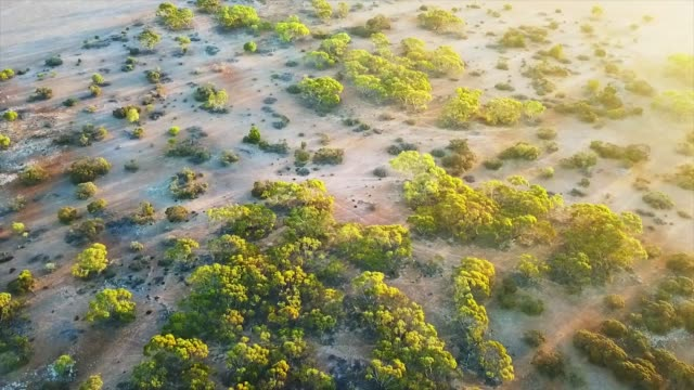 australian outback from the sky - western australia stock videos & royalty-free footage