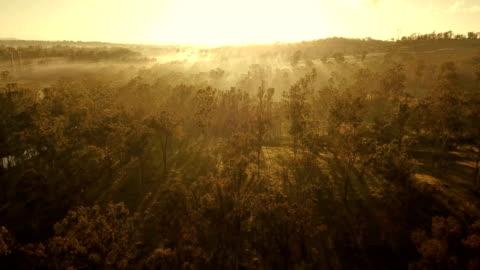 tramonto australiano sopra la savana - composizione orizzontale video stock e b–roll