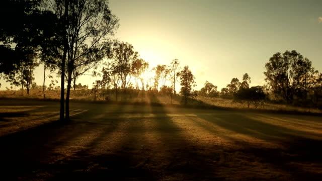 australian sunset above savannah - дикая местность стоковые видео и кадры b-roll