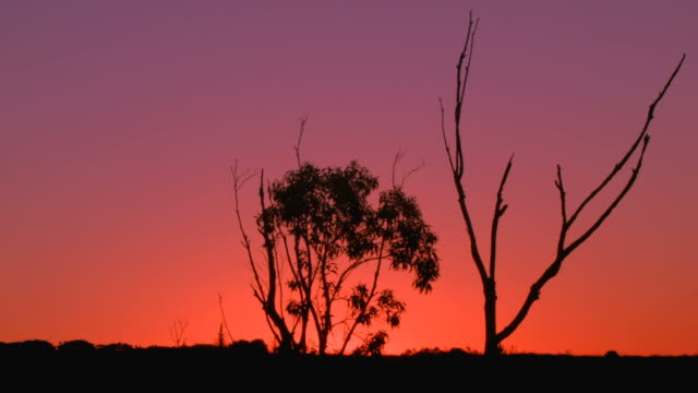 Australian Sunset Landscape Establishing Shot video