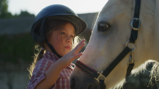 authentic close up shot of a cute little girl with a jockey helmet is caressing a white pony horse at riding stable with a sunshine - imbracatura video stock e b–roll