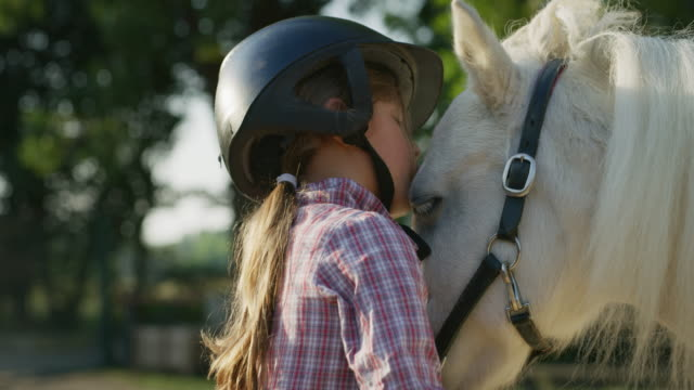 authentic close up shot of a cute little girl with a jockey helmet is caressing a white pony horse at riding stable with a sunshine - jeździć na zwięrzęciu filmów i materiałów b-roll