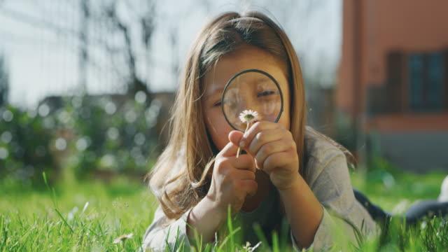 scatto autentico di una bambina carina che si diverte a giocare con loupe esaminando insetti e fiori fuori dalla loro casa - curiosità video stock e b–roll