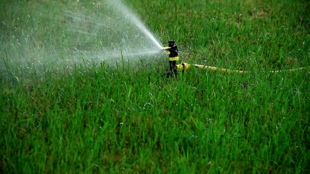 automatic lawn watering - посыпать стоковые видео и кадры b-roll