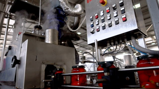 automatic line for processing and canning vegetables . preserving tomatoes - autoclave video stock e b–roll