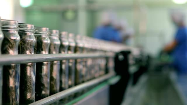 Automatische Linie für die Verarbeitung von Gemüsekonserven . Hersteller von Traubenblättern . Abfüllung Traubenblätter in Glasgläsern. Konservenfabrik Förderband . Kann Herstellungsprozess . – Video