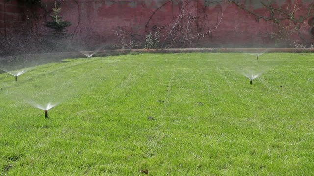 Automatic watering the lawn  drenched stock videos & royalty-free footage