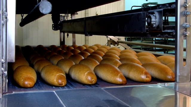 Automation Bakery Factory Bread video