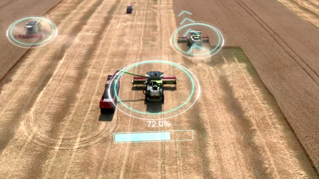 Autonomous transportation in agriculture. Self-driving harvesters ride on wheat field and harvest. Aerial view