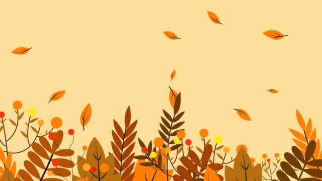 가을 애니메이션 - leaf 스톡 비디오 및 b-롤 화면