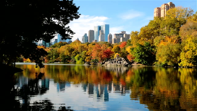 Autumn at The Lake in Central Park, New York City video